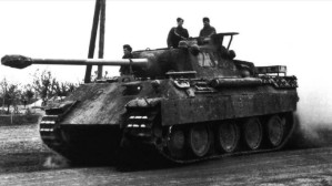 PantherD-1.jpg (13997 Byte)